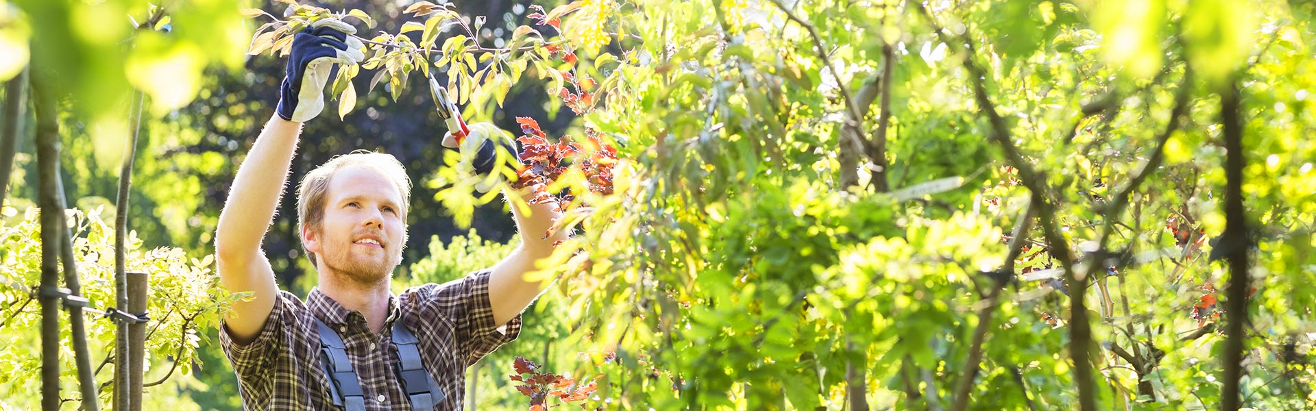 Free up your schedule with our top gardening services!