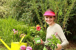 Professional Lawn Care Services in Marylebone, W1